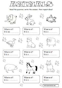 what is it  animali.pdf